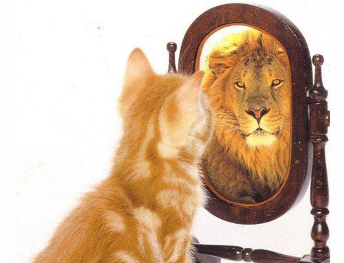 Gebruik de goede spiegel!