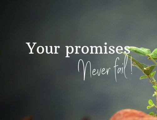 Your promises never fail!