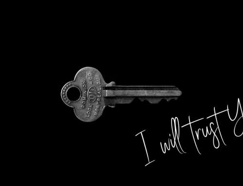 I will trust you!