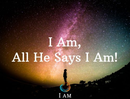 I Am, All He Says I Am!